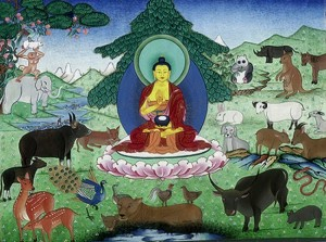01-buddhas-love-for-animals