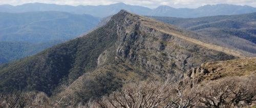 The-Bluff-Trail